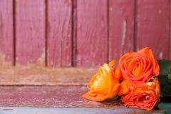 在古色古香的背景的玫瑰 免版税图库摄影