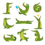 在另外姿势集合,在白色背景的滑稽的食肉动物的卡通人物传染媒介例证的友好的鳄鱼 向量例证