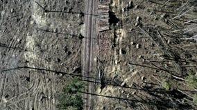 在可怕的砍伐森林,环境破坏上的飞行 股票录像