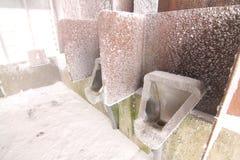 在台湾南投Hehuan山雪 免版税库存图片