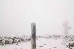 在台湾南投Hehuan山雪 图库摄影