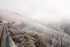 在台湾南投Hehuan山雪 免版税库存照片