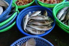 在台湾的鱼市 库存图片