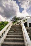 在台阶的野生猴子对在山的上面的Wat Khao Chong Kaeo泰国佛教寺庙在Prachuap镇 免版税库存图片