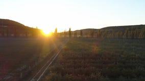 在史诗谷的鸟瞰图与领域和mountans背景 射击 晴朗早晨的山 美好的横向 股票录像