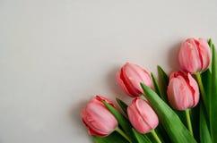 在右下角的新鲜的桃红色郁金香花束在与被隔绝的拷贝空间的白色背景 免版税图库摄影
