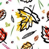 在叶子、锥体、枝杈、分支、秋天元素和模板框架的红色9月字法在白色背景 行家bac 图库摄影