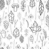 在叶子、锥体、枝杈、秋天元素和模板框架的9月字法在白色背景 库存图片