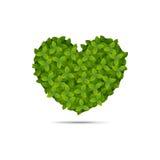 在叶子报道的心脏形状 免版税库存图片