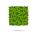 在叶子报道的方形的形状 库存图片