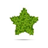 在叶子报道的星形状 免版税图库摄影