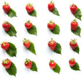 在叶子样式被隔绝的白色背景的草莓 库存图片