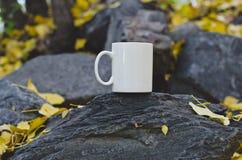 在叶子的一个空白的咖啡杯盖了石头 免版税库存照片