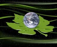 在叶子的地球 图库摄影