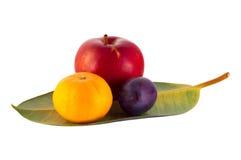 在叶子的果子 免版税库存图片