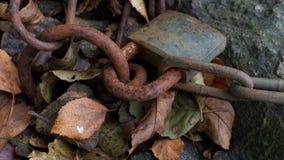 在叶子的生锈的挂锁 免版税库存照片