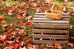 在叶子的秋天篮子 图库摄影