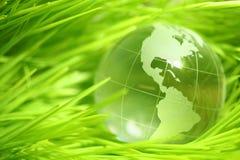 在叶子的玻璃地球 库存图片