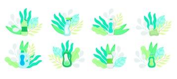 在叶子的Eco友好的家庭清洁物品 自然洗涤剂 房子洗涤物的产品 库存例证