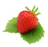 在叶子的Strawberrie,被隔绝的白色背景 免版税库存照片