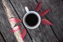 在叶子背景舱内甲板位置的咖啡杯 免版税图库摄影