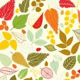 在叶子题材的色的样式 秋天样式 免版税库存图片