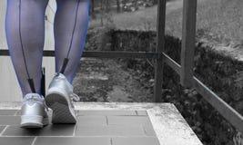 在合身的长袜的性感的腿 免版税库存图片