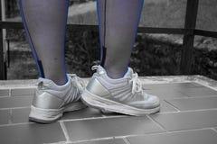 在合身的长袜的性感的腿 免版税图库摄影