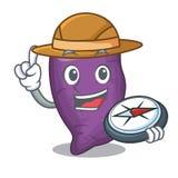 在吉祥人篮子的探险家紫色地瓜 库存例证