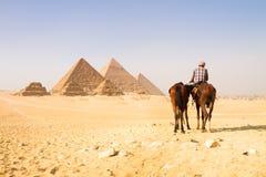 在吉萨棉谷,开罗,埃及的伟大的金字塔 图库摄影