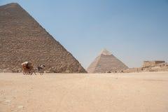 在吉萨棉金字塔前面的马扯拽的推车 免版税库存照片