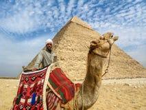 在吉萨棉金字塔,开罗,埃及前面的骆驼人 库存图片