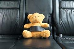 在后座紧固的玩具熊 免版税库存照片