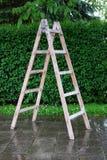 在后院的木梯子 库存照片