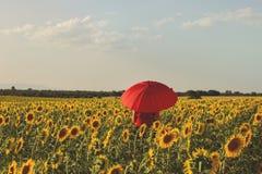 在向日葵中的红色伞 免版税库存图片