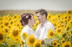 在向日葵领域的美好的夫妇 库存照片