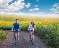 在向日葵领域的青少年的夫妇骑马自行车 免版税图库摄影