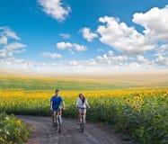 在向日葵领域的青少年的夫妇骑马自行车 免版税库存图片