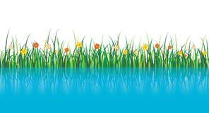 在向量水附近的草例证 免版税图库摄影