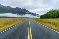 在向Milford Sound的路上,南方,新西兰29 免版税库存照片