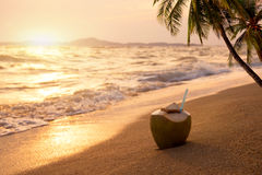 在含沙热带海滩的新鲜的椰子鸡尾酒在日落时间 库存照片