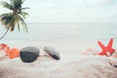 在含沙的太阳镜在海边与海星、壳、珊瑚在沙洲和迷离海背景的夏天海滩 免版税库存照片