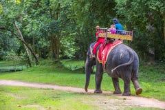 在吴哥窟的大象乘驾在柬埔寨 图库摄影