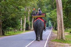 在吴哥窟的大象乘驾在柬埔寨 免版税库存照片