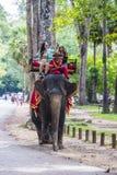 在吴哥窟的大象乘驾在柬埔寨 库存照片