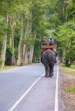 在吴哥窟的大象乘驾在柬埔寨 免版税库存图片