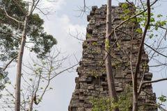 在吴哥窟,暹粒,柬埔寨附近的古庙视图 与树的困厄的石塔 库存照片