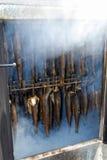 在吸烟房的鱼 库存照片