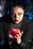在咒语继母的苹果转换 库存图片
