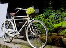 在咖啡店前的白色自行车 免版税库存图片